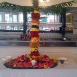 Fruit Palm Hire