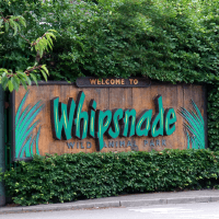 Whipsnade Animal Park